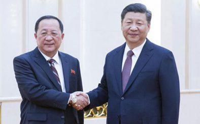 Chinese President Xi Jinping Meets North Korean FM Ri Yong Ho