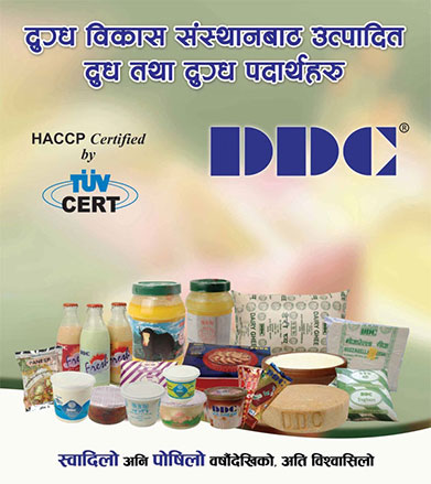 Dairy Development Corporation