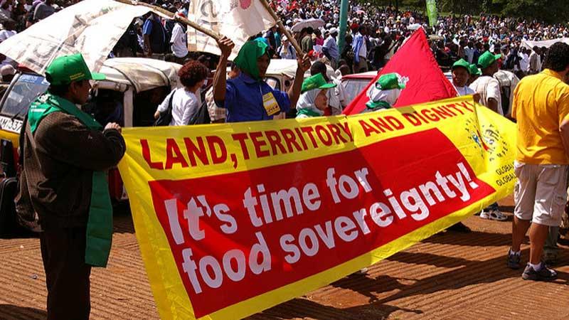 Food Sovereignty, Campaign La Via Campesina (LVC), International Peasants' Organization