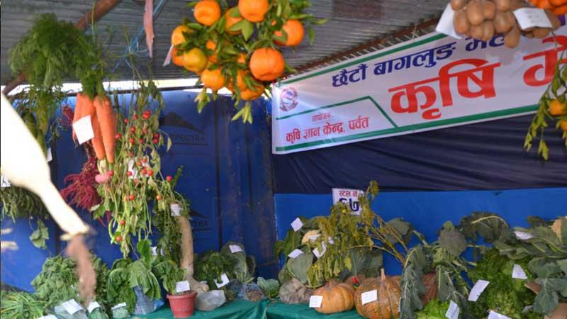 Agriculture expo, Baglung mahotsab, Baglung festival
